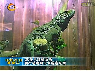 太原动物园两栖馆将于26号免费开放