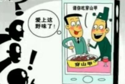 """""""穿山甲公子""""背后有什么故事? 2017-2-8"""