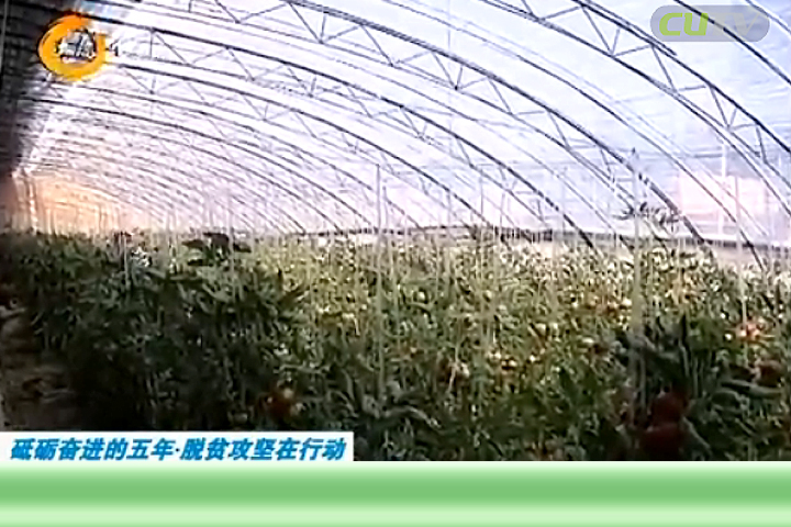娄烦县新庄村:以产业理念运营致富之道
