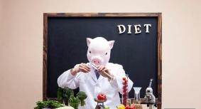 动物实验表明高脂饮食不良影响可传多代