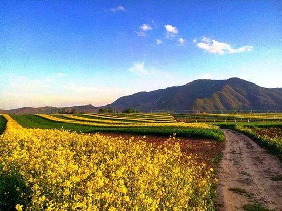 宁夏固原,最美的诗和远方