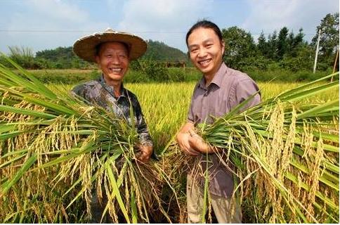 """农业农村部将组织""""1+6+N""""的庆祝活动喜迎首个中国农民丰收节"""