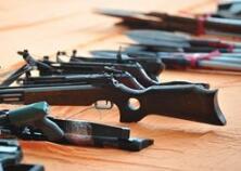 公安机关打击整治枪爆违法犯罪十大典型案例
