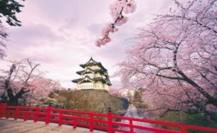 春节出境游价格同比涨一成 海岛度假仍是首选