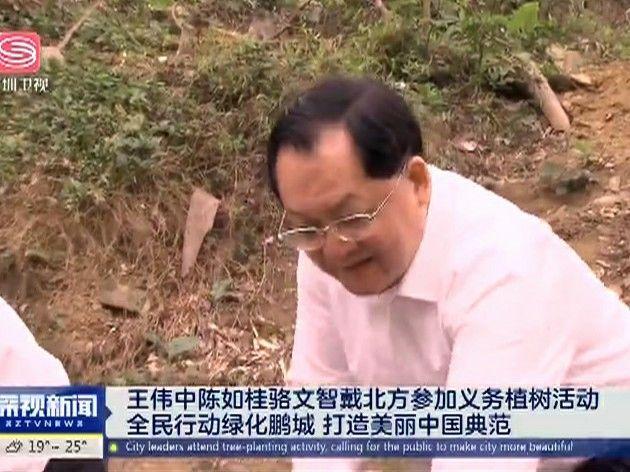王伟中陈如桂骆文智戴北方参加义务植树活动 全民行动绿化鹏城 打造美丽中国典范