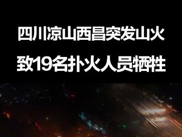 西昌山火致19名地方扑火人员牺牲