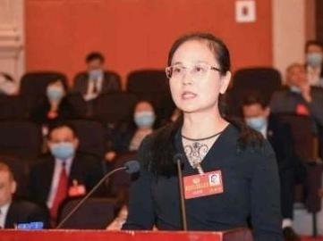 """来自海南的""""大拇指"""":深圳干部的热情和专业来自哪里?"""