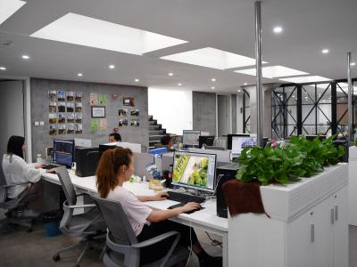 多部门鼓励发展线上办公 超3亿用户在钉钉开启在线办公模式
