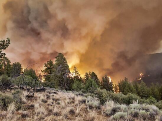 全球多地遭遇极端天气:欧洲洪灾百余死 北美山火蔓延